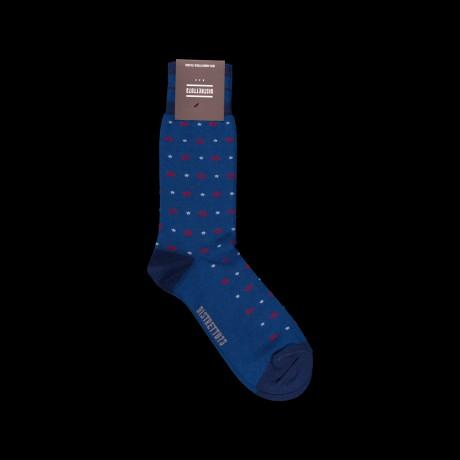 Mėlynos vyriškos kojinės su žuvytėmis